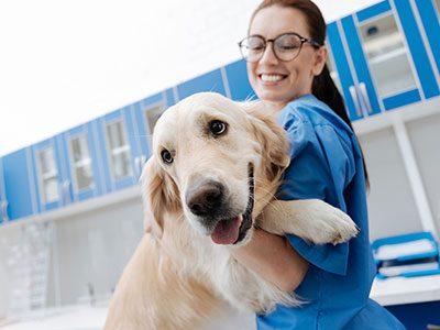 farmacologia-aplicada-a-veterinaria
